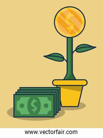 plant with coin and bills money dollars over yellow