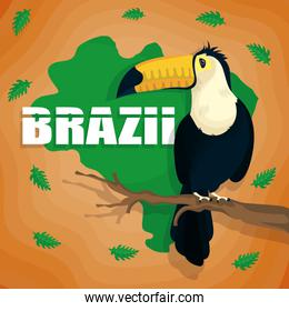 brazil carnival poster with toucan and map