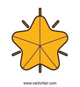 gold star bright ornament icon