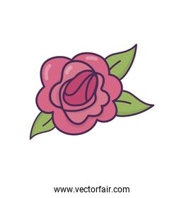 rose flower delicate icon over white