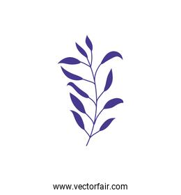 foliage leaves branch nature ecology icon