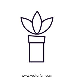 ecology potted plant nature icon