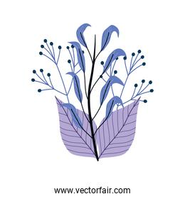Isolated leaves drawing vector design