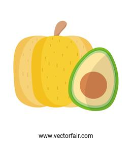 Isolated avocado and pumpkin vector design