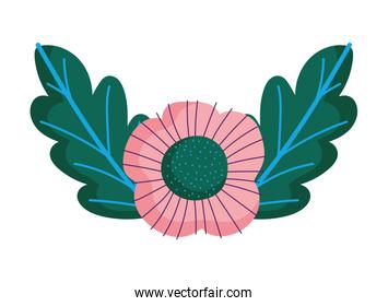 pink flower leaves foliage nature decoration icon
