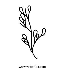 pink ecology branch leaves foliage decoration line style