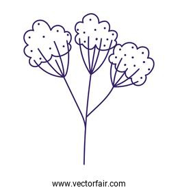 flowers branches leaves botanical spring season icon