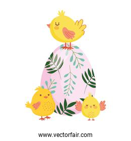 happy easter cute chickens colored egg flowers foliage nature