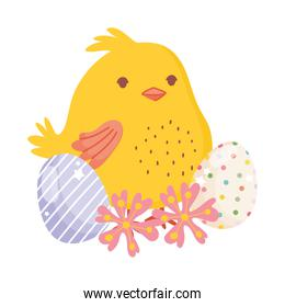 happy easter cute chicken decorative eggs flowers nature