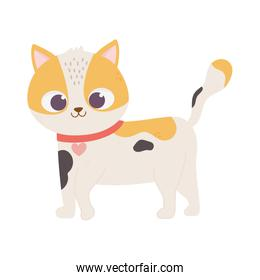 cute spotted cat with collar heart walking cartoon