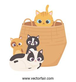 cat in basket and kittens sitting cartoon