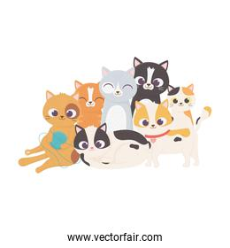 cat with wool ball and kittens mascot feline domestic