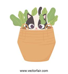 cats make me happy, black and white cat curious in basket cartoon