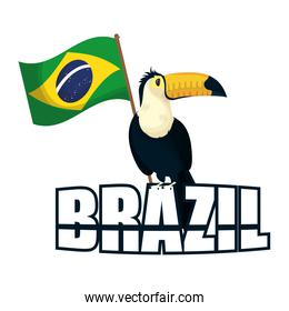 brazil carnival poster with lettering and toucan