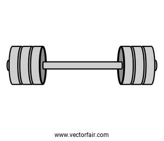 weight lifting dumbbell isolated icon