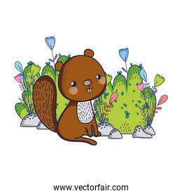 cute animals, squirrel flowers foliage bush nature