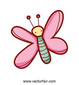cute butterfly insect animal cartoon isolated icon design