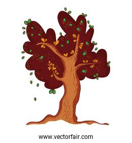 autumnal tree leaves foliage cartoon isolated icon design