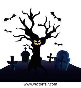 haunted dry tree in cemetery