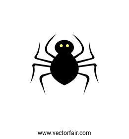 spider animal for halloween isolated icon