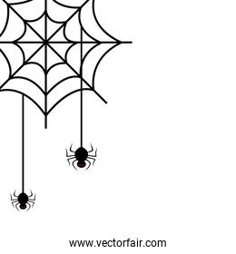 spiders of halloween in cobweb