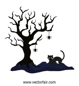 dry tree with cat and spider of halloween