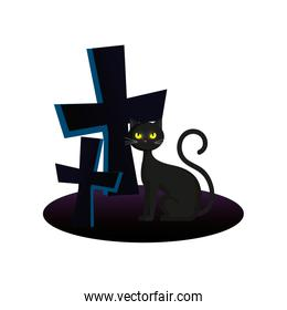 cat with crosses of halloween