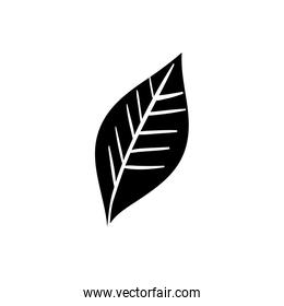 silhouette of leaf nature ecology isolated icon