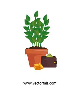 wallet with plant in pot and coins
