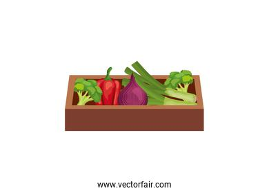healthy vegetable in wooden box isolated icon