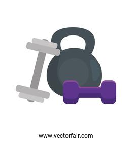 set of dumbbell equipment gym isolated icon
