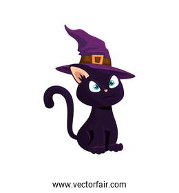 cat of halloween with witch hat