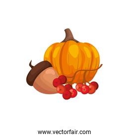 season autumn pumpkin with nut and fruits