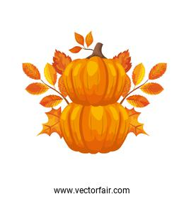 pumpkin with autumn leafs isolated icon