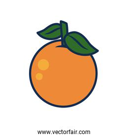 vegetables and fruits concept, orange icon, line and fill style