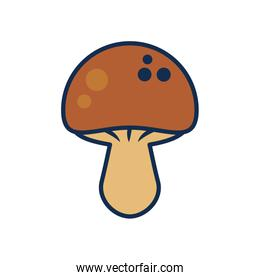 fruits and vegetables concept, mushroom icon, line and fill style