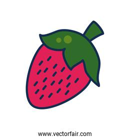 fruits and vegetables concept, strawberry icon, line and fill style