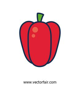 fruits and vegetables concept, pepper icon, line and fill style