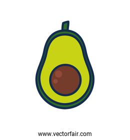 vegetables and fruits concept, avocado icon, line and fill style