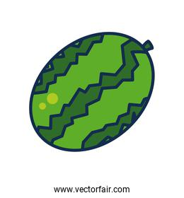 fruits and vegetables concept, watermelon icon, line and fill style