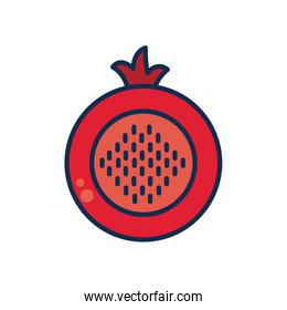 vegetables and fruits concept, tomato slice icon, line and fill style