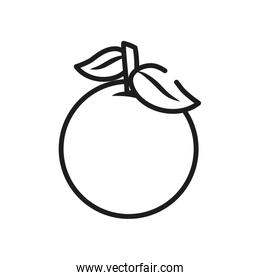 vegetables and fruits concept, orange icon, line style
