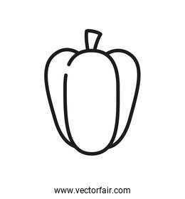 fruits and vegetables concept, pepper icon, line style