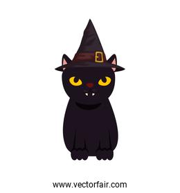 black cat halloween with hat witch