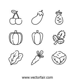 carrot, vegetables and fruits icon set, line style