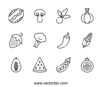 watermelon, fruits and vegetables icon set, line style
