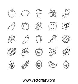 apple, fruits and vegetables icon set, line style