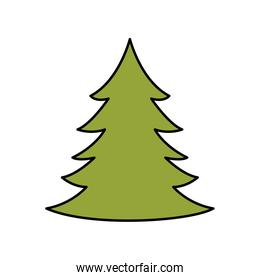 pine tree christmas isolated icon
