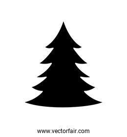silhouette of pine tree christmas isolated icon