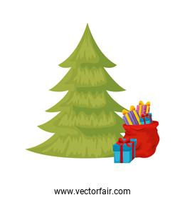 pine tree christmas with gift boxes isolated icon